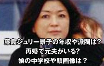 藤島ジュリー景子の再婚した元夫や年収や派閥は?兄弟や娘の中学校や顔画像も調査