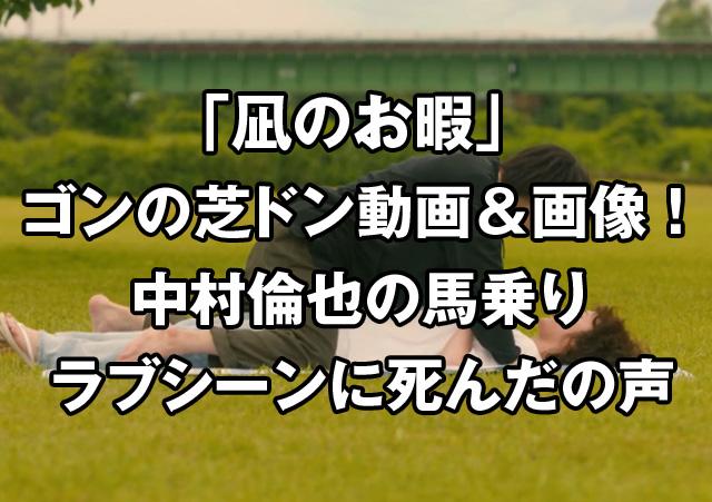 凪のお暇のゴンの芝ドン動画画像!中村倫也馬乗りラブシーンに死んだの声